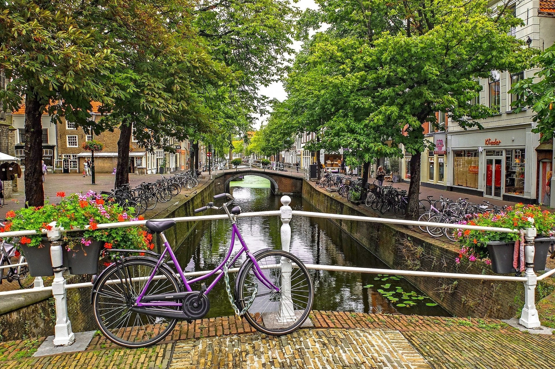 Student Housing: The complete guide to housing in Holland (2019 Update)